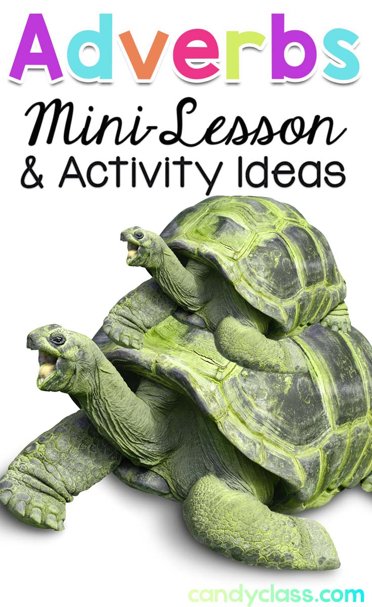 Adverbs Lesson & Activities